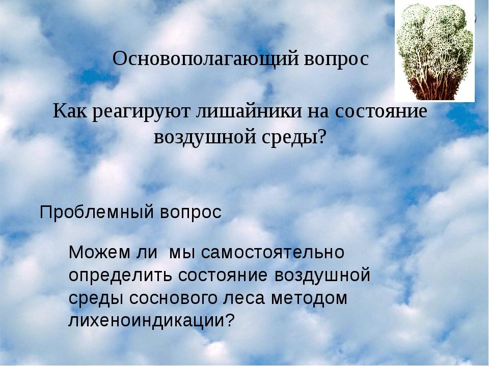 Основополагающий вопрос Как реагируют лишайники на состояние воздушной среды?...