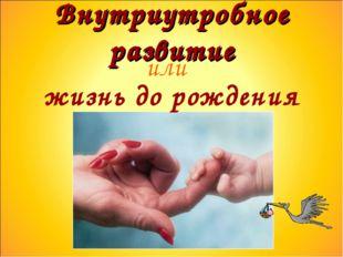 Внутриутробное развитие или жизнь до рождения