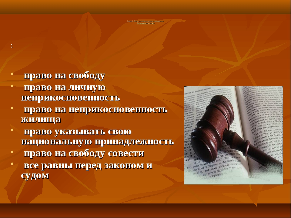 Глава 2. Права и свободы человека и гражданина Гражданские (ст. 17-28) : пра...