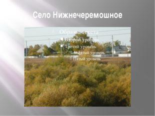 Село Нижнечеремошное