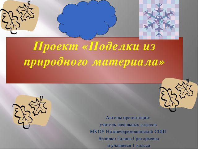 Проект «Поделки из природного материала» Авторы презентации: учитель начальны...