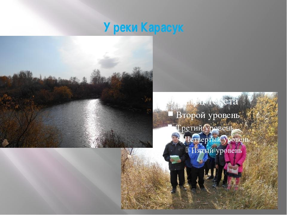 У реки Карасук