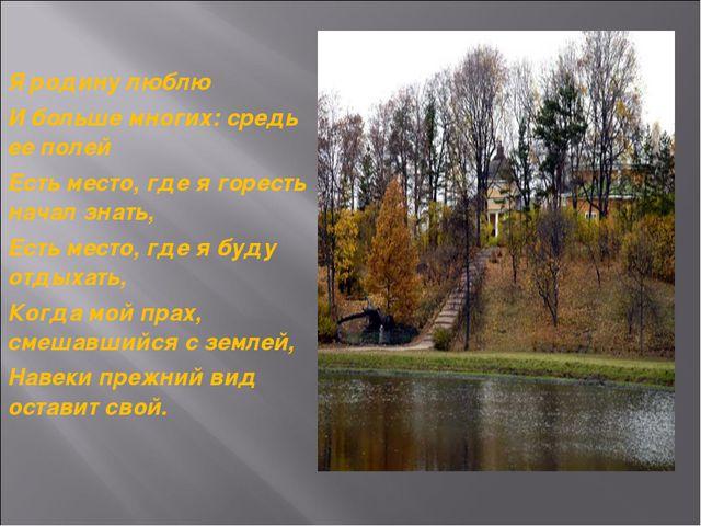 Я родину люблю И больше многих: средь ее полей Есть место, где я горесть нача...