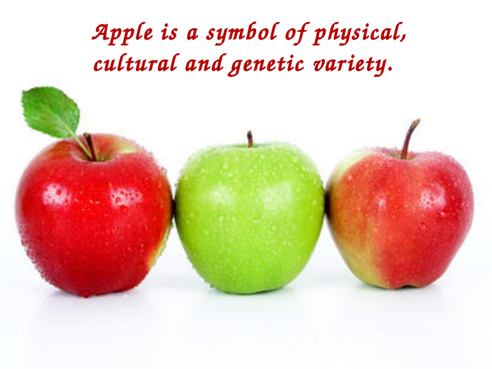 Apple is a symbol of physical, cultural and genetic variety.