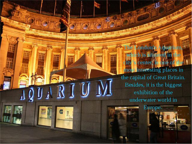 The London's Aquarium, which is situated in the city's center, is one of the...