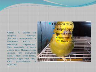 ОПЫТ 3. Любит ли попугай темноту? Для этого эксперимента я накрывала клетку