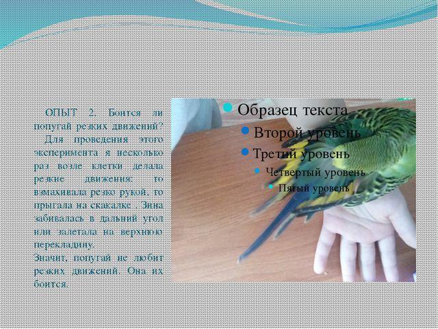 ОПЫТ 2. Боится ли попугай резких движений? Для проведения этого эксперимента...