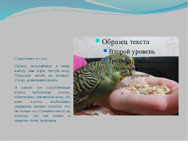Содержание и уход Своему попугайчику я чищу клетку, даю корм, чистую воду. О...