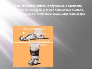 В Древнем Египте египтяне обувались в сандалии, состоящие из папируса, а такж