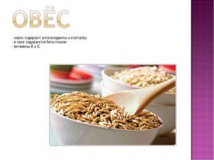 - зерно содержит антиоксиданты и клетчатку - в овсе содержится бета-глюкан -