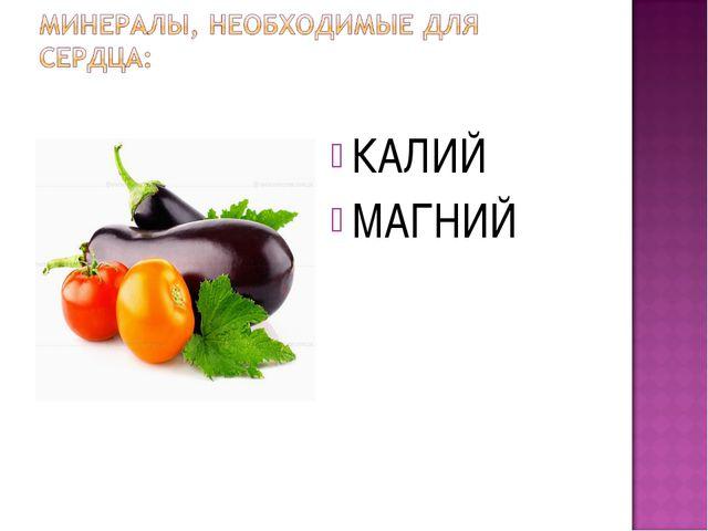КАЛИЙ МАГНИЙ