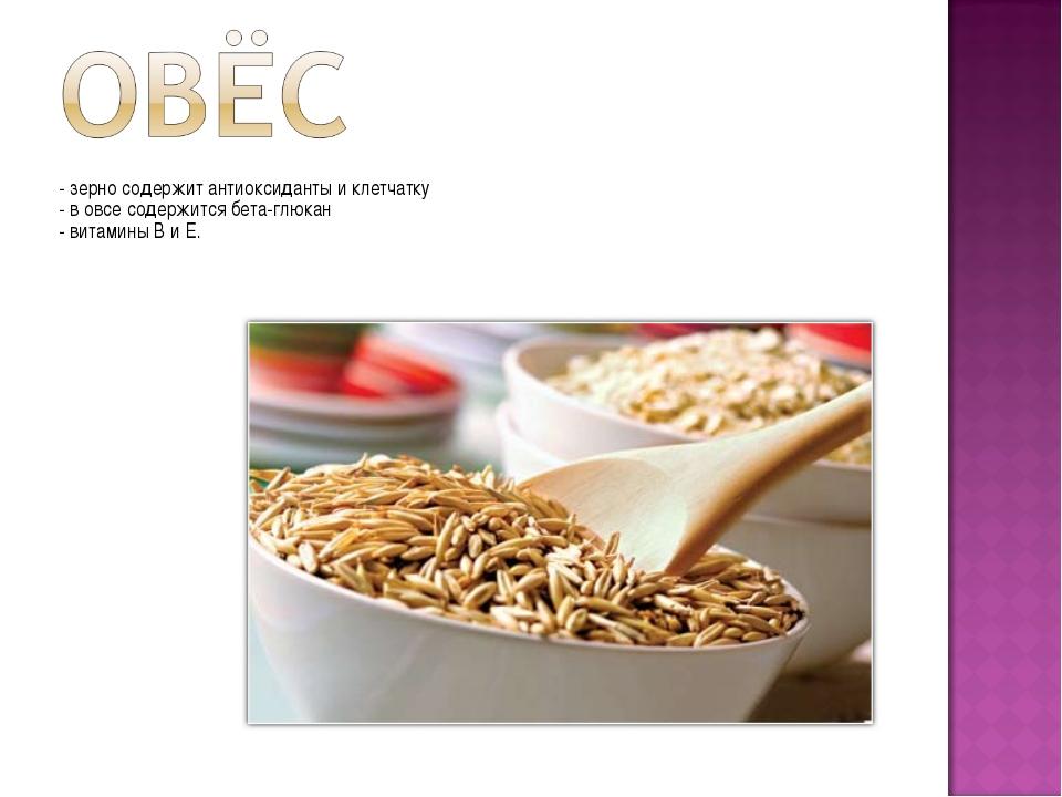 - зерно содержит антиоксиданты и клетчатку - в овсе содержится бета-глюкан -...