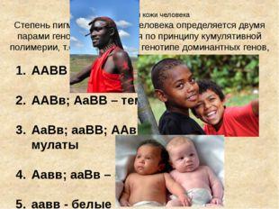 Пигментация кожи человека Степень пигментации кожи человека определяется двум