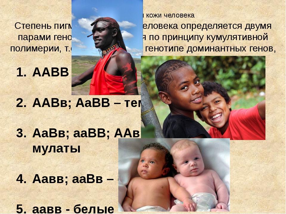 Пигментация кожи человека Степень пигментации кожи человека определяется двум...