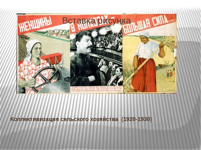 Коллективизация сельского хозяйства (1920-1930)