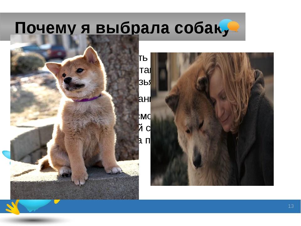 Почему я выбрала собаку Я решила сделать презентацию о собаке, потому что я с...