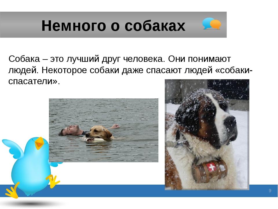 Немного о собаках Собака – это лучший друг человека. Они понимают людей. Неко...