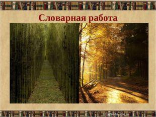 Словарная работа Просеки лесных дорог… Просека - полоса, узкая дорога, проруб