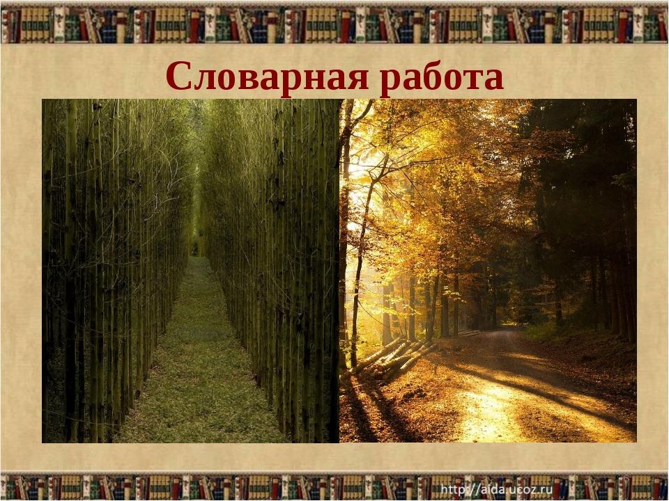 Словарная работа Просеки лесных дорог… Просека - полоса, узкая дорога, проруб...