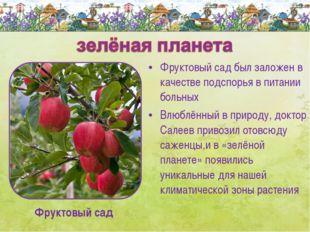 Фруктовый сад был заложен в качестве подспорья в питании больных Влюблённый в