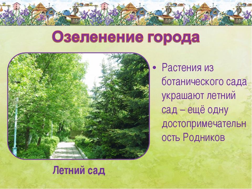 Растения из ботанического сада украшают летний сад – ещё одну достопримечател...