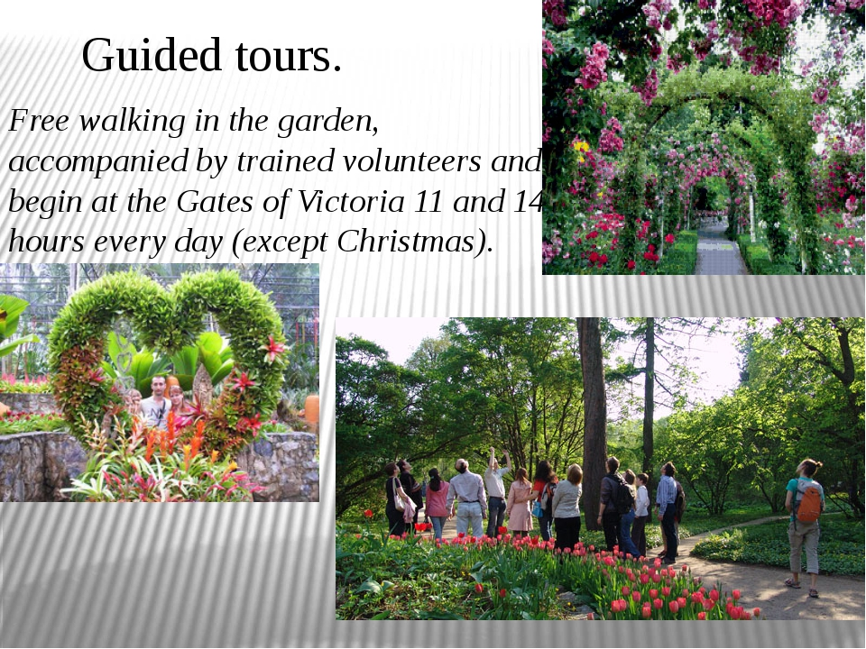 Guided tours. Free walking in the garden, accompanied by trained volunteers a...