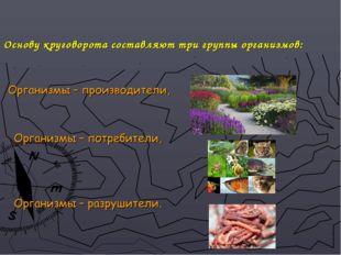 Основу круговорота составляют три группы организмов: