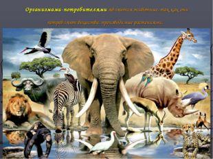 Организмами-потребителями являются животные, так как они потребляют вещества,