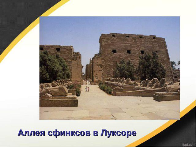 Аллея сфинксов в Луксоре
