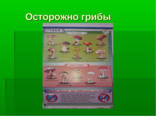 Осторожно грибы