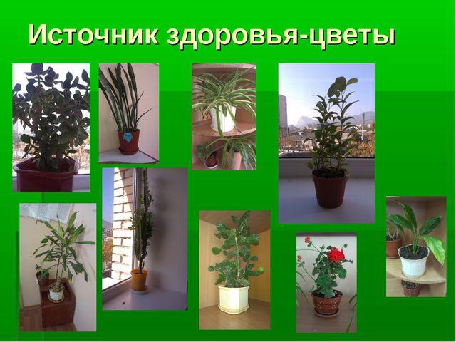 Источник здоровья-цветы
