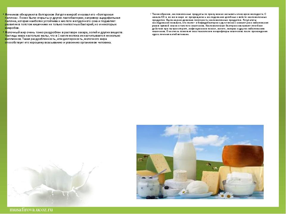 Мечников обнаружил в болгарском йогурте микроб и назвал его «болгарская палоч...