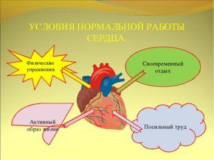 УСЛОВИЯ НОРМАЛЬНОЙ РАБОТЫ СЕРДЦА. Физические упражнения Своевременный отдых А