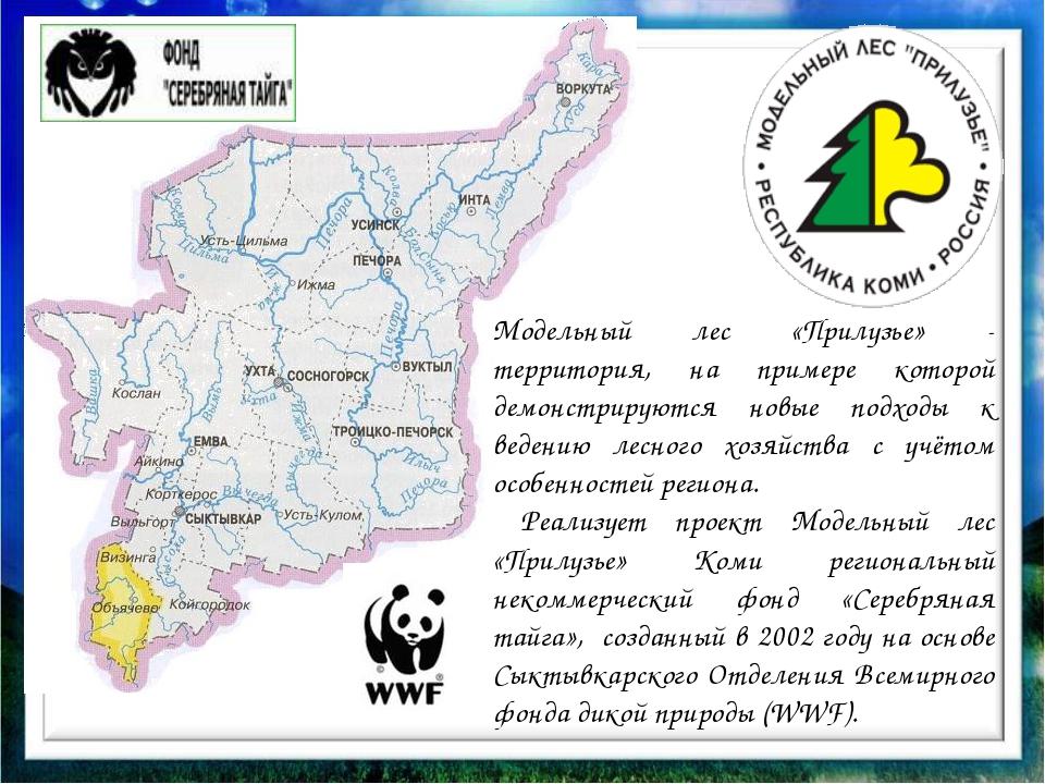 Модельный лес «Прилузье» - территория, на примере которой демонстрируются но...