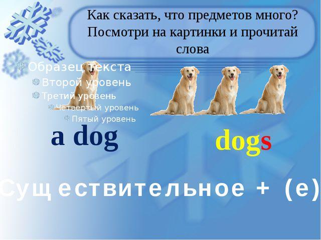 Как сказать, что предметов много? Посмотри на картинки и прочитай слова a dog...