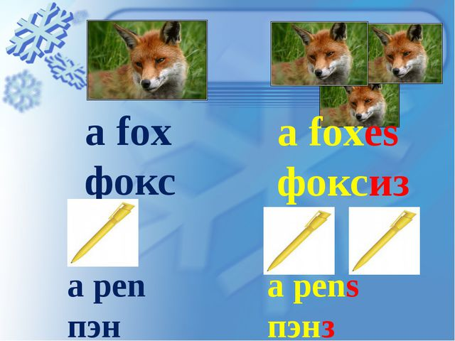 a fox фокс a foxes фоксиз a pen пэн a pens пэнз