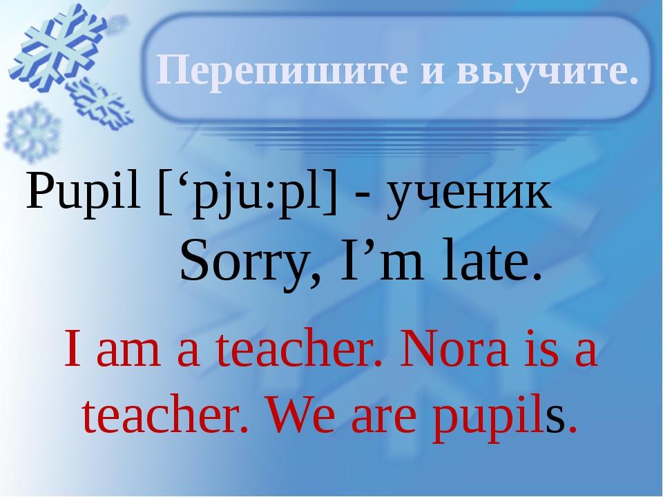 Pupil ['pju:pl] - ученик Sorry, I'm late. Перепишите и выучите. I am a teache...