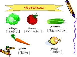 VEGETABLES Cabbage Carrot Cucumber Tomato Onion