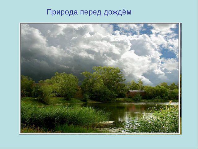 Природа перед дождём