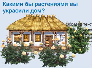 Какими бы растениями вы украсили дом?