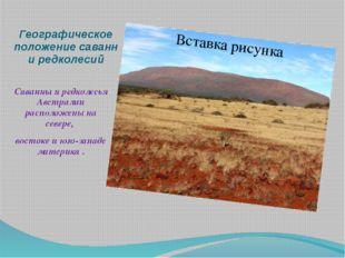 Географическое положение саванн и редколесий Саванны и редколесья Австралии р