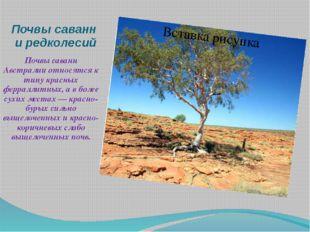 Почвы саванн и редколесий Почвы саванн Австралии относятся к типу красных фер