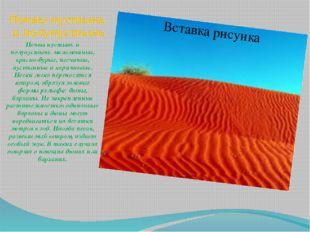 Почвы пустынь и полупустынь Почвы пустынь и полупустынь маломощные, красно-бу