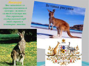 Кенгуру Это животное со странным названием «кенгуру» является символом Австра