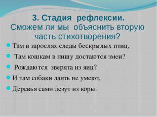 3. Стадия рефлексии. Сможем ли мы объяснить вторую часть стихотворения? Там в