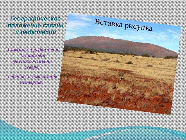 Географическое положение саванн и редколесий Саванны и редколесья Австралии р...