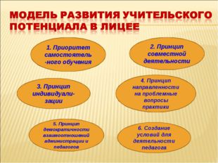 1. Приоритет самостоятель-ного обучения 2. Принцип совместной деятельности 6.