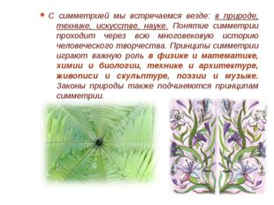 Симметрия растений Многие цветы обладают интересным свойством: их можно повер