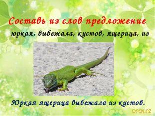 Составь из слов предложение. юркая, выбежала, кустов, ящерица, из Юркая ящери