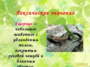 Лексическое значение Ящерица – небольшое животное с удлинённым телом, покрыты